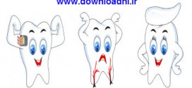Vectors Funny Teeth Icons